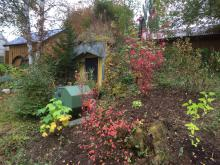 Årets potatisskörd finns i jordkällaren, komposttrumman ska efter tömning tas in i växthuset